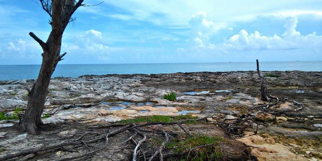 New EU/CARIFORUM project coordinated by PAHO will tackle climate change and health impacts in the Caribbean